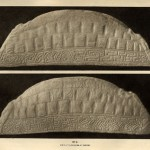 The Anglo-Scandenavian Hogback: a Tool for Assimilation